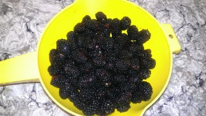 washed blackberries