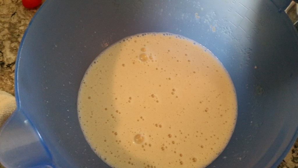 batter before flour added