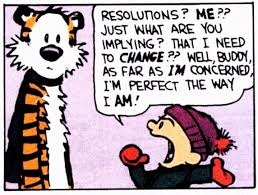 calvin and hobbes ny resolution