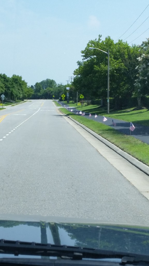 Little USA flags lining both sides of the street