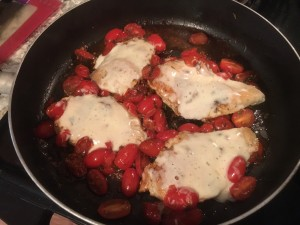 cheesy chicken, tomatoes, vinegar, and basil...yum!